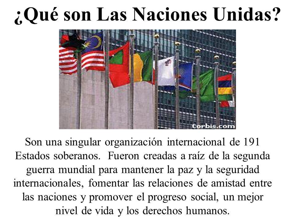 Son una singular organización internacional de 191 Estados soberanos. Fueron creadas a raíz de la segunda guerra mundial para mantener la paz y la seg