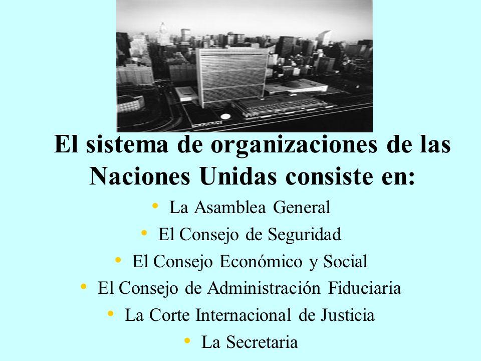 El sistema de organizaciones de las Naciones Unidas consiste en: La Asamblea General El Consejo de Seguridad El Consejo Económico y Social El Consejo