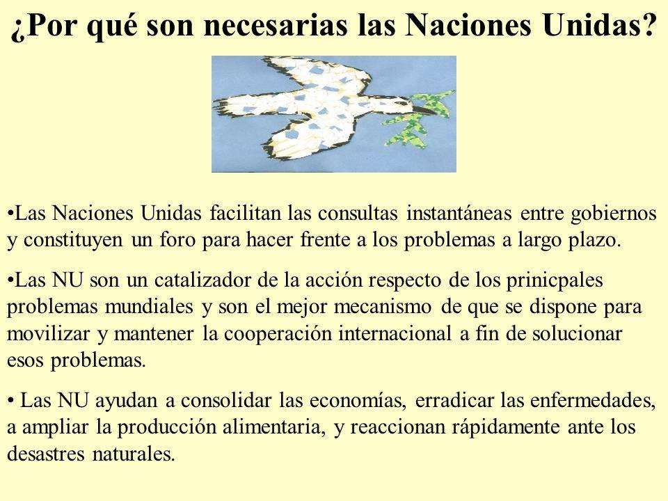 ¿Por qué son necesarias las Naciones Unidas? Las Naciones Unidas facilitan las consultas instantáneas entre gobiernos y constituyen un foro para hacer