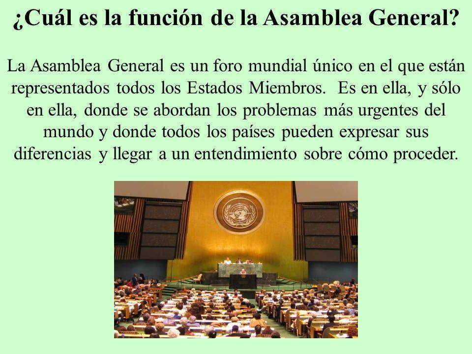 ¿Cuál es la función de la Asamblea General? La Asamblea General es un foro mundial único en el que están representados todos los Estados Miembros. Es