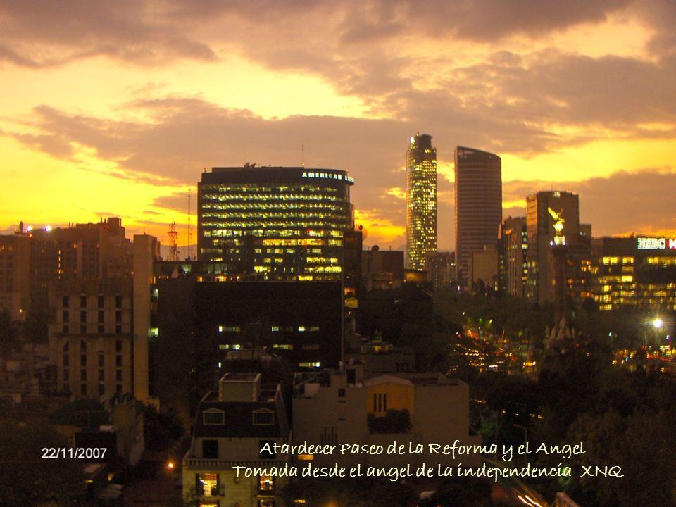 Atardecer Paseo de la Reforma y el Angel Tomada desde el angel de la independencia XNQ