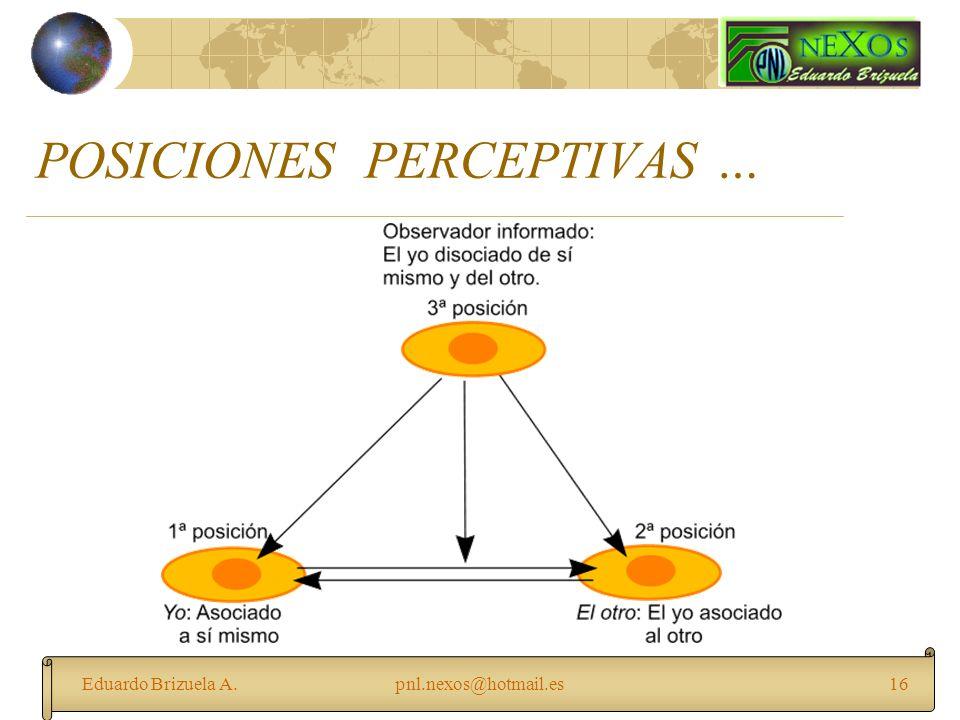 Eduardo Brizuela A.pnl.nexos@hotmail.es16 POSICIONES PERCEPTIVAS …