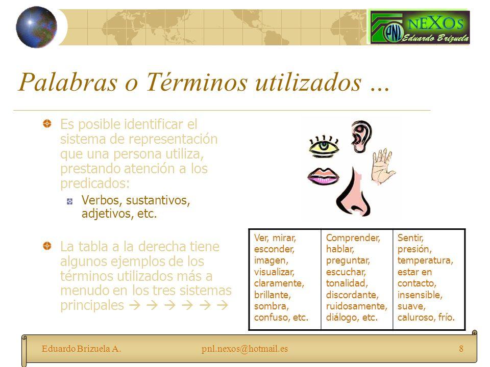 Eduardo Brizuela A.pnl.nexos@hotmail.es8 Palabras o Términos utilizados … Es posible identificar el sistema de representación que una persona utiliza,