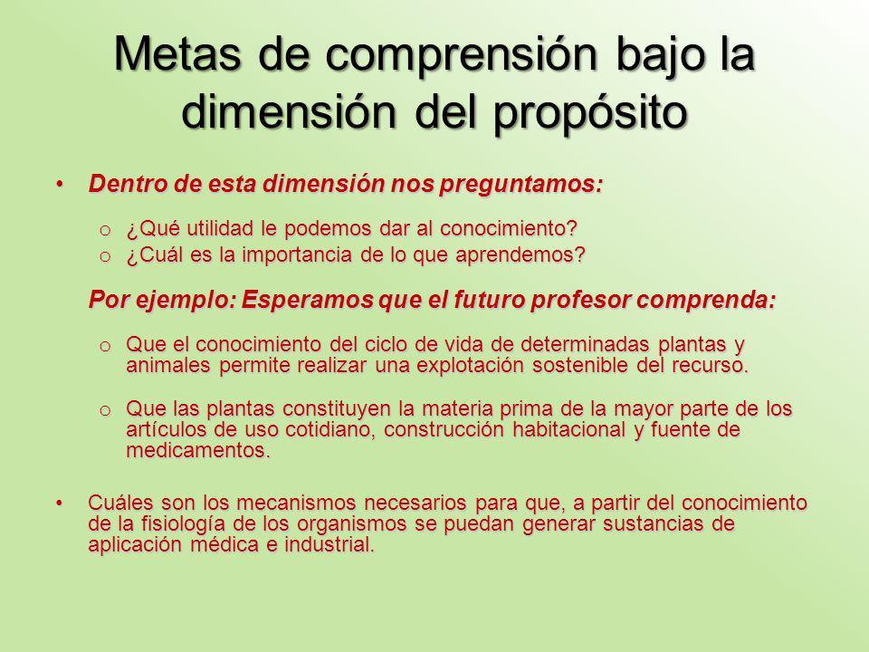 Metas de comprensión bajo la dimensión del propósito Dentro de esta dimensión nos preguntamos:Dentro de esta dimensión nos preguntamos: o ¿Qué utilidad le podemos dar al conocimiento.
