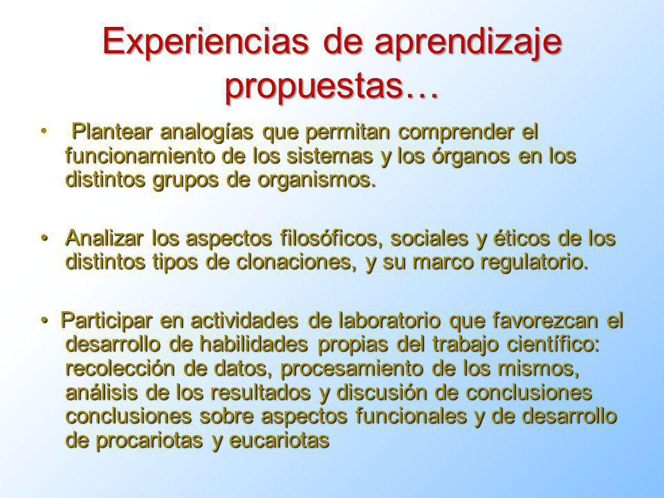 Experiencias de aprendizaje propuestas… Plantear analogías que permitan comprender el funcionamiento de los sistemas y los órganos en los distintos grupos de organismos.