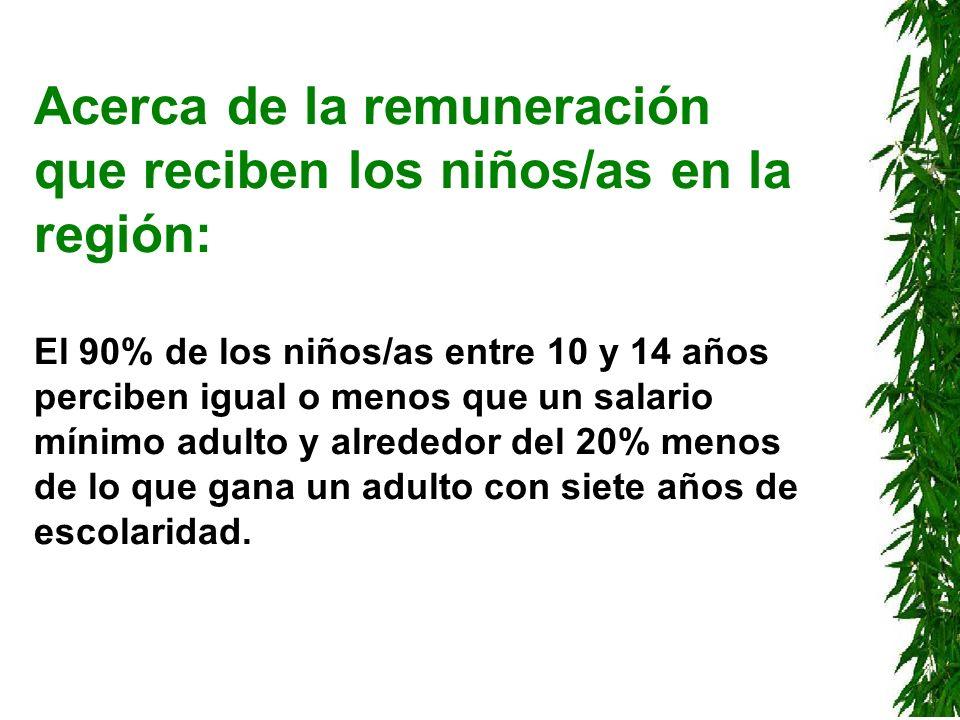 Acerca de la remuneración que reciben los niños/as en la región: El 90% de los niños/as entre 10 y 14 años perciben igual o menos que un salario mínim