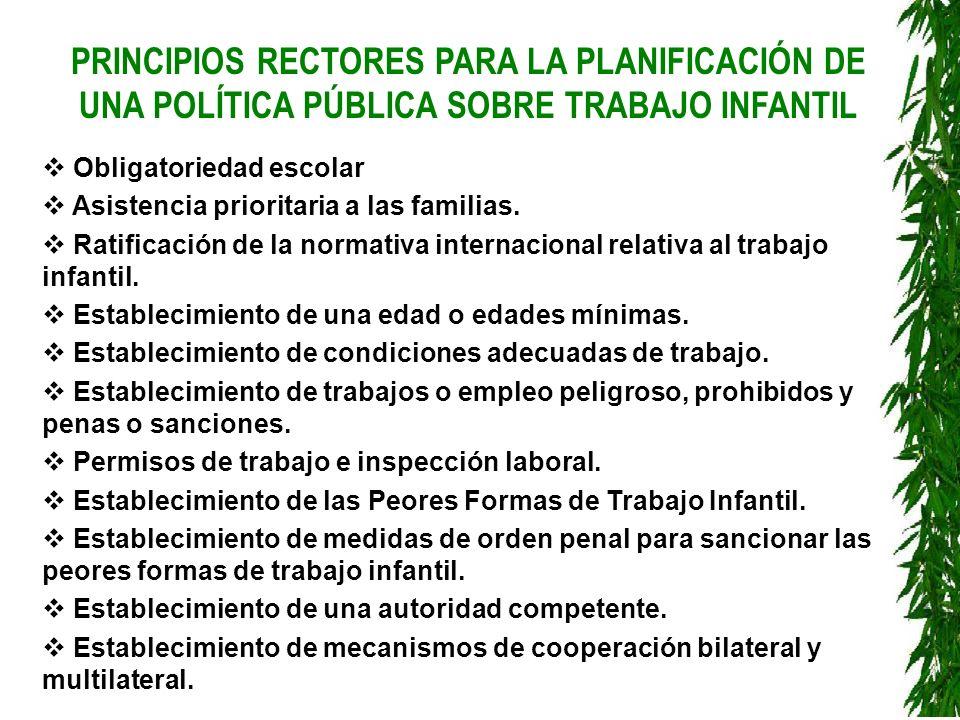 PRINCIPIOS RECTORES PARA LA PLANIFICACIÓN DE UNA POLÍTICA PÚBLICA SOBRE TRABAJO INFANTIL Obligatoriedad escolar Asistencia prioritaria a las familias.
