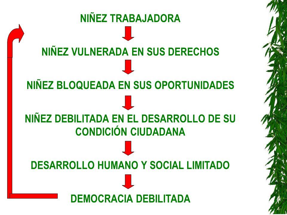 NIÑEZ TRABAJADORA NIÑEZ VULNERADA EN SUS DERECHOS NIÑEZ BLOQUEADA EN SUS OPORTUNIDADES NIÑEZ DEBILITADA EN EL DESARROLLO DE SU CONDICIÓN CIUDADANA DES