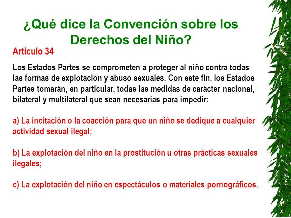 ¿Qué dice la Convención sobre los Derechos del Niño? Artículo 34 Los Estados Partes se comprometen a proteger al niño contra todas las formas de explo