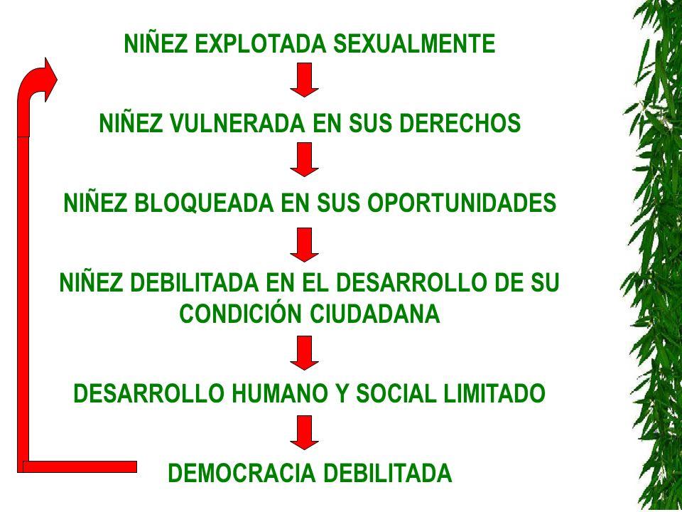NIÑEZ EXPLOTADA SEXUALMENTE NIÑEZ VULNERADA EN SUS DERECHOS NIÑEZ BLOQUEADA EN SUS OPORTUNIDADES NIÑEZ DEBILITADA EN EL DESARROLLO DE SU CONDICIÓN CIU