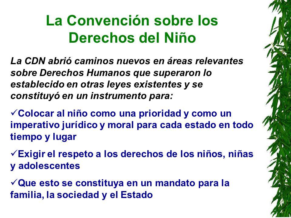 La Convención sobre los Derechos del Niño La CDN abrió caminos nuevos en áreas relevantes sobre Derechos Humanos que superaron lo establecido en otras