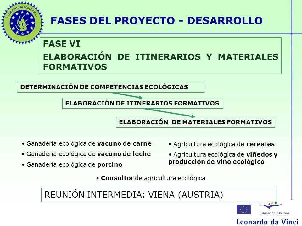 FASES DEL PROYECTO - DESARROLLO FASE VI ELABORACIÓN DE ITINERARIOS Y MATERIALES FORMATIVOS DETERMINACIÓN DE COMPETENCIAS ECOLÓGICAS ELABORACIÓN DE ITI
