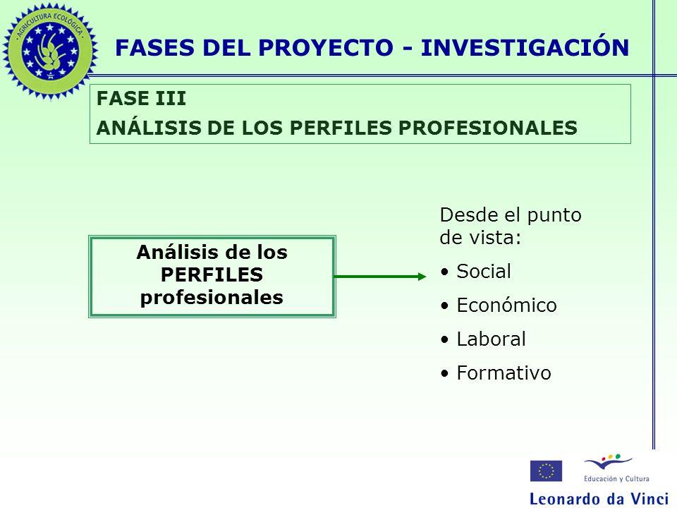 FASES DEL PROYECTO - INVESTIGACIÓN FASE III ANÁLISIS DE LOS PERFILES PROFESIONALES Análisis de los PERFILES profesionales Desde el punto de vista: Soc