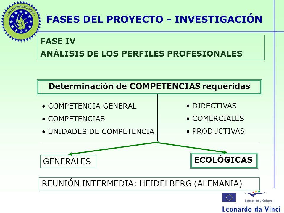 FASES DEL PROYECTO - INVESTIGACIÓN FASE IV ANÁLISIS DE LOS PERFILES PROFESIONALES Determinación de COMPETENCIAS requeridas GENERALES ECOLÓGICAS REUNIÓ