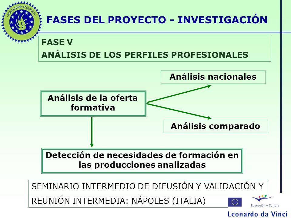 FASES DEL PROYECTO - INVESTIGACIÓN FASE V ANÁLISIS DE LOS PERFILES PROFESIONALES Análisis de la oferta formativa Análisis nacionales Análisis comparad