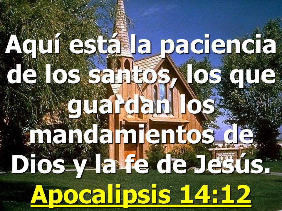 Apocalipsis 12:16-17 Pero la tierra ayudó a la mujer, pues la tierra abrió su boca y tragó el río que el dragón había echado de su boca. Entonces el d