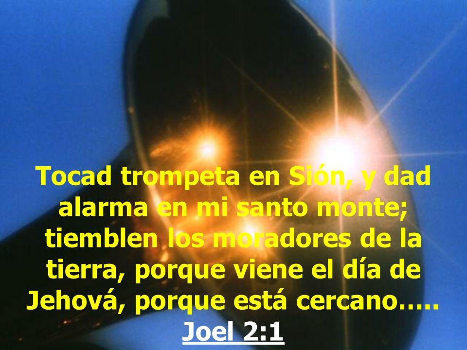 Aquí está la paciencia de los santos, los que guardan los mandamientos de Dios y la fe de Jesús. Apocalipsis 14:12