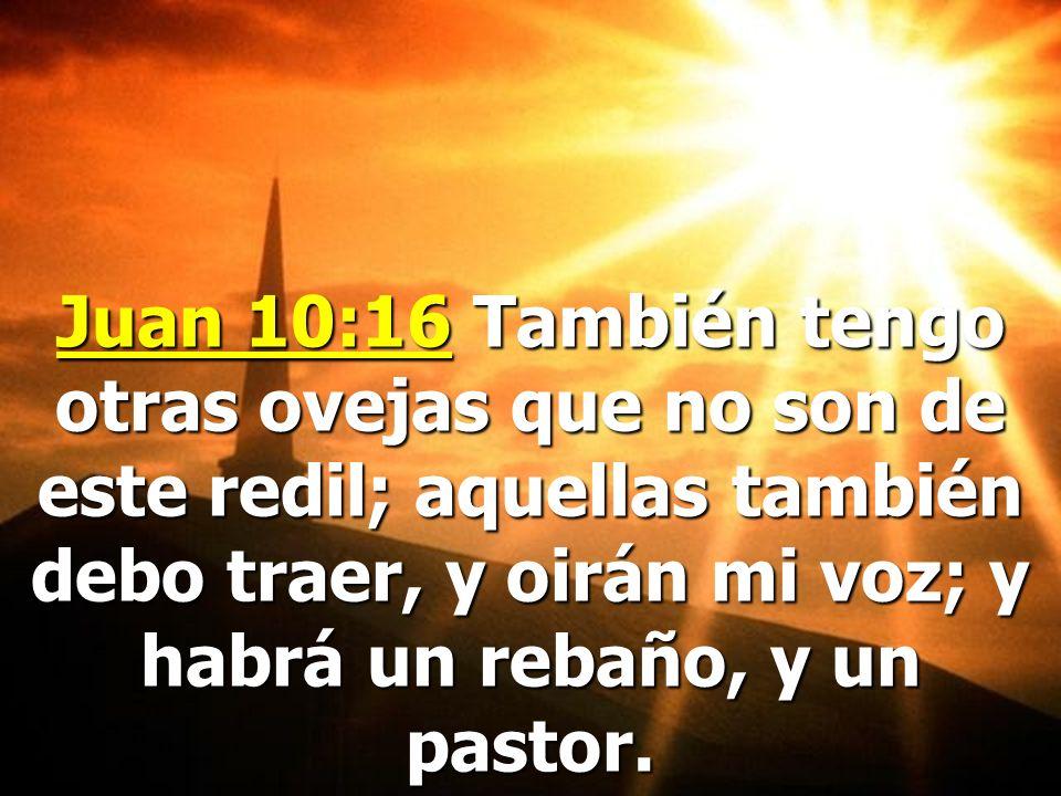 Pero el Dios del cielo tiene gente sincera en todas las denominaciones cristianas que hay en el mundo hoy. La mayoría del pueblo de Dios está aun en B