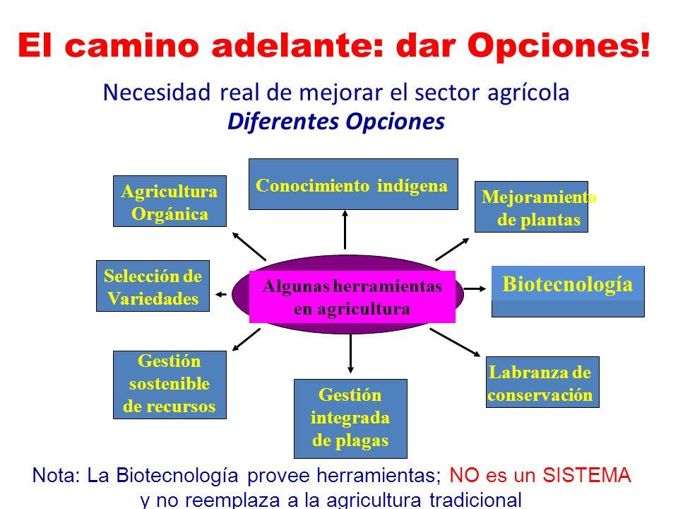 Necesidad real de mejorar el sector agrícola Diferentes Opciones Algunas herramientas en agricultura Agricultura Orgánica Conocimiento indígena Mejora