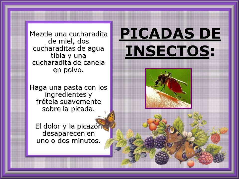 PICADAS DE INSECTOS: PICADAS DE INSECTOS: Mezcle una cucharadita de miel, dos cucharaditas de agua tibia y una cucharadita de canela en polvo.