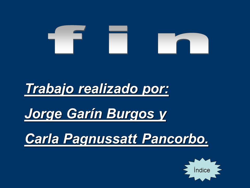 Trabajo realizado por: Jorge Garín Burgos y Carla Pagnussatt Pancorbo. Índice
