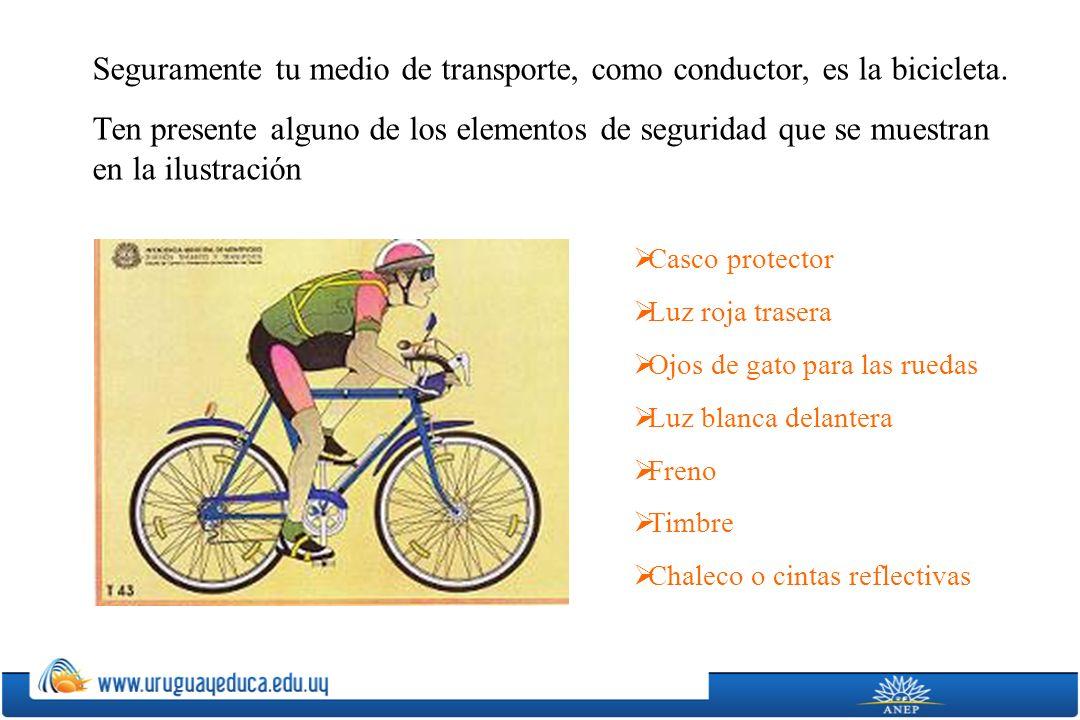 Seguramente tu medio de transporte, como conductor, es la bicicleta.