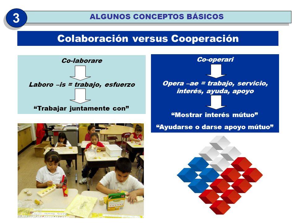 Co-laborare Laboro –is = trabajo, esfuerzo Trabajar juntamente con Co-operari Opera –ae = trabajo, servicio, interés, ayuda, apoyo Mostrar interés mút