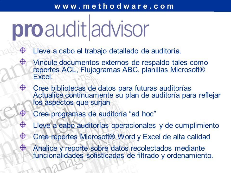 w w w.m e t h o d w a r e. c o m Lleve a cabo el trabajo detallado de auditoría.