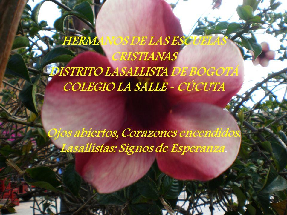 HERMANOS DE LAS ESCUELAS CRISTIANAS DISTRITO LASALLISTA DE BOGOTÁ COLEGIO LA SALLE - CÚCUTA Ojos abiertos, Corazones encendidos.