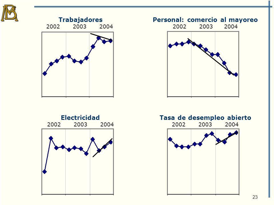 23 Trabajadores 2002 2003 2004 Personal: comercio al mayoreo 2002 2003 2004 Electricidad 2002 2003 2004 Tasa de desempleo abierto 2002 2003 2004