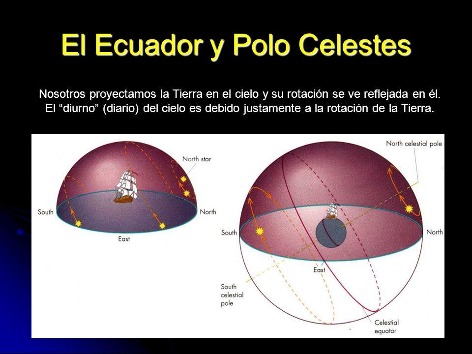 13 El Ecuador y Polo Celestes Nosotros proyectamos la Tierra en el cielo y su rotación se ve reflejada en él. El diurno (diario) del cielo es debido j