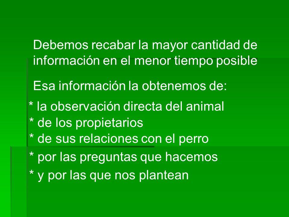Debemos recabar la mayor cantidad de información en el menor tiempo posible Esa información la obtenemos de: * la observación directa del animal * de