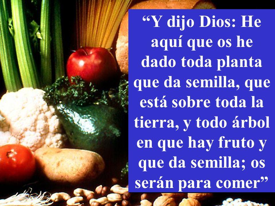 Y dijo Dios: He aquí que os he dado toda planta que da semilla, que está sobre toda la tierra, y todo árbol en que hay fruto y que da semilla; os serán para comer