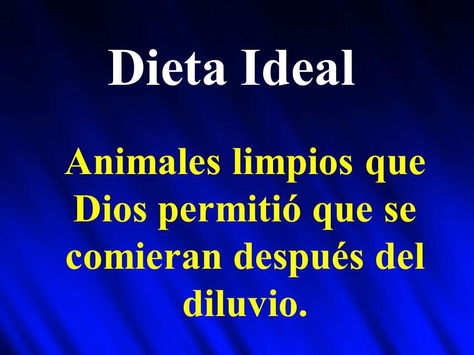 Dieta Ideal Animales limpios que Dios permitió que se comieran después del diluvio.