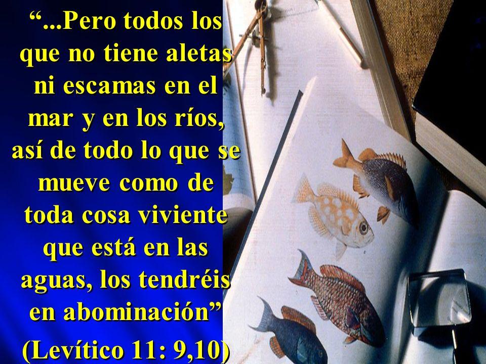...Pero todos los que no tiene aletas ni escamas en el mar y en los ríos, así de todo lo que se mueve como de toda cosa viviente que está en las aguas, los tendréis en abominación (Levítico 11: 9,10)...Pero todos los que no tiene aletas ni escamas en el mar y en los ríos, así de todo lo que se mueve como de toda cosa viviente que está en las aguas, los tendréis en abominación (Levítico 11: 9,10)