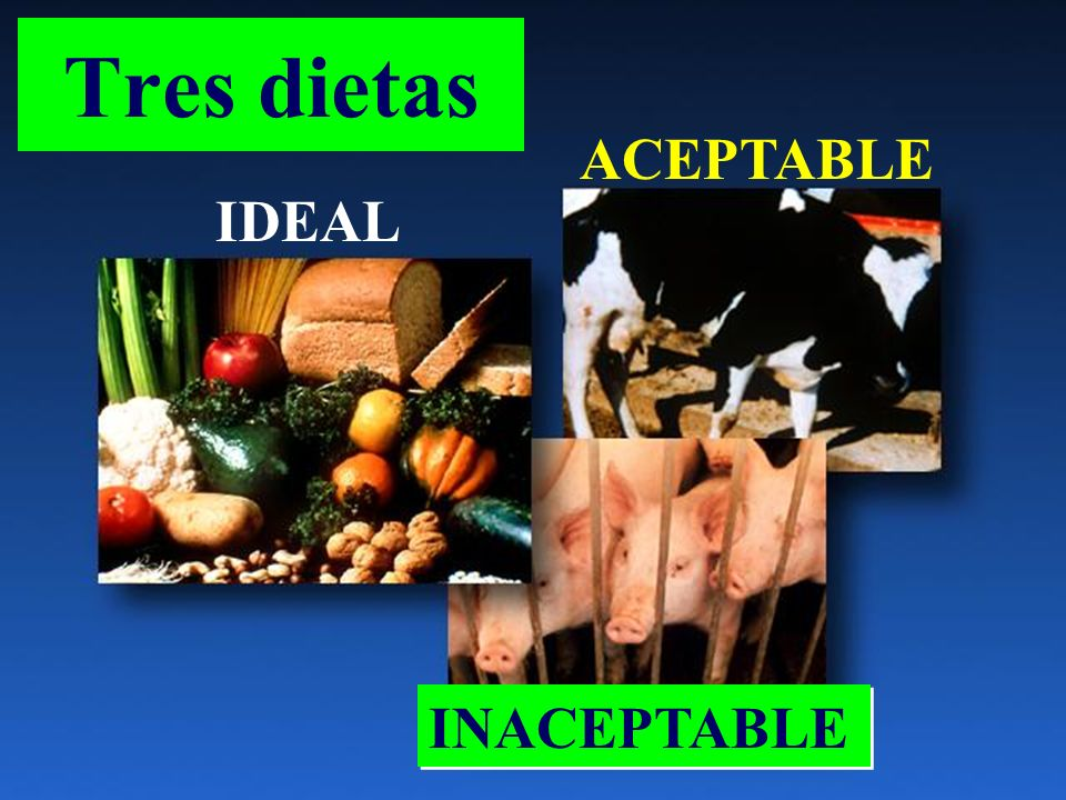 Tres dietas IDEAL ACEPTABLE INACEPTABLE