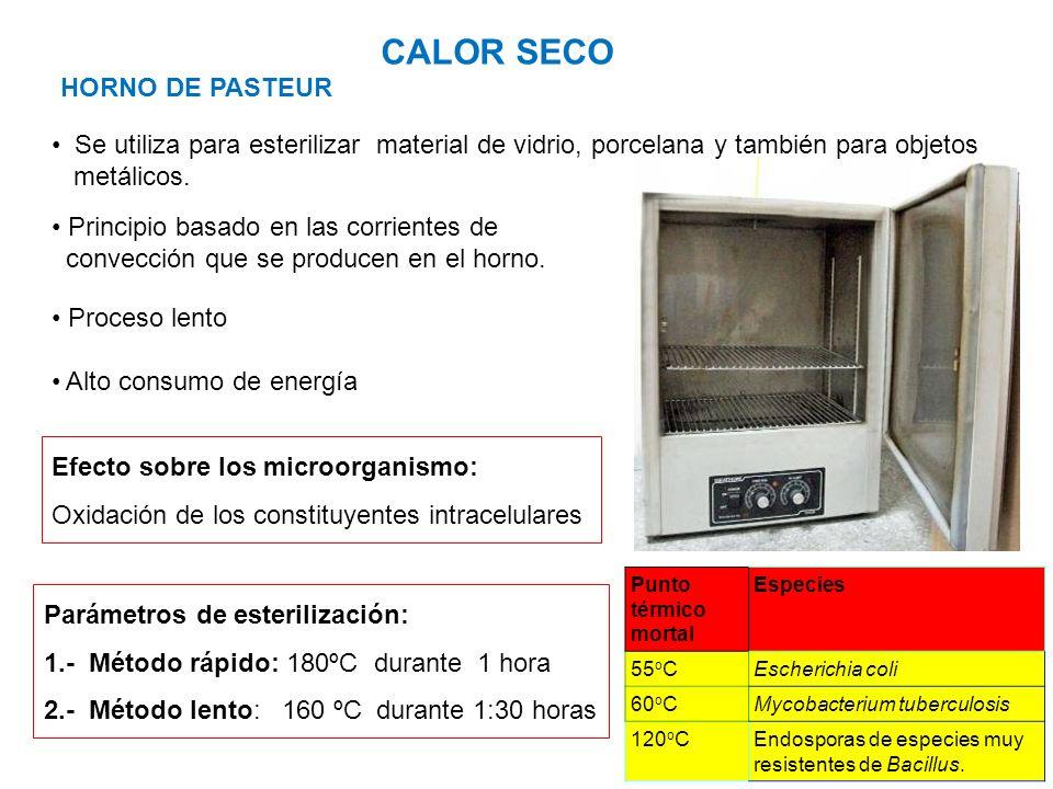 HORNO DE PASTEUR CALOR SECO Se utiliza para esterilizar material de vidrio, porcelana y también para objetos metálicos. Punto térmico mortal Especies