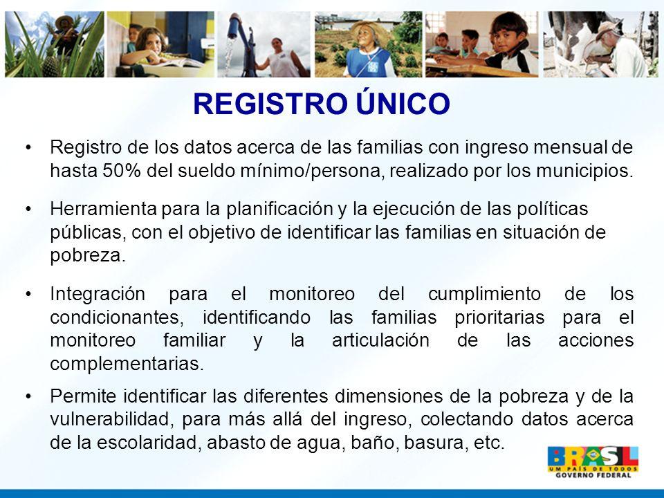 Registro de los datos acerca de las familias con ingreso mensual de hasta 50% del sueldo mínimo/persona, realizado por los municipios. Herramienta par