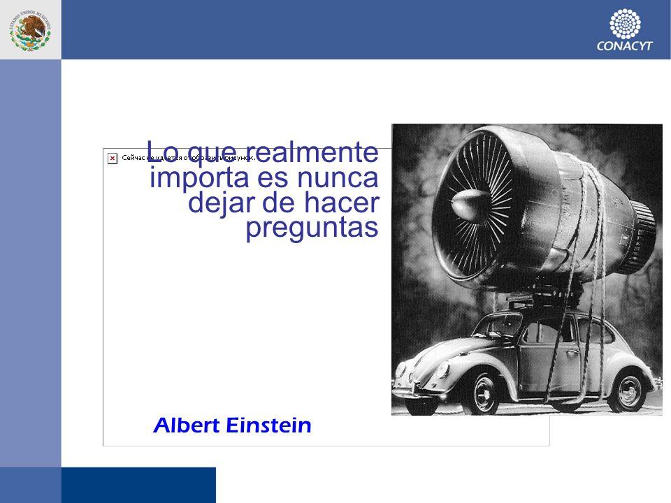 Lo que realmente importa es nunca dejar de hacer preguntas Albert Einstein