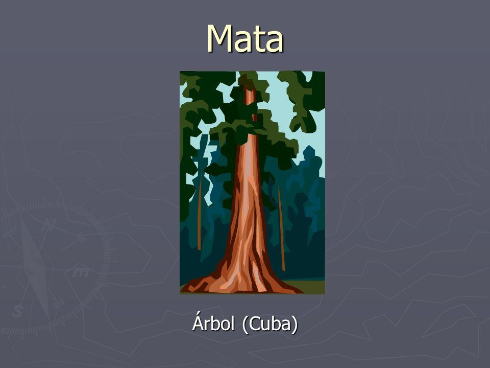 Mata Árbol (Cuba)