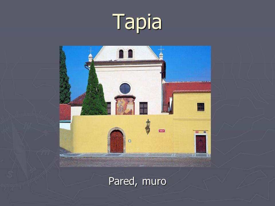 Tapia Pared, muro