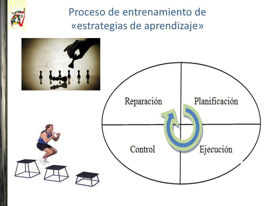 Proceso de entrenamiento de «estrategias de aprendizaje»
