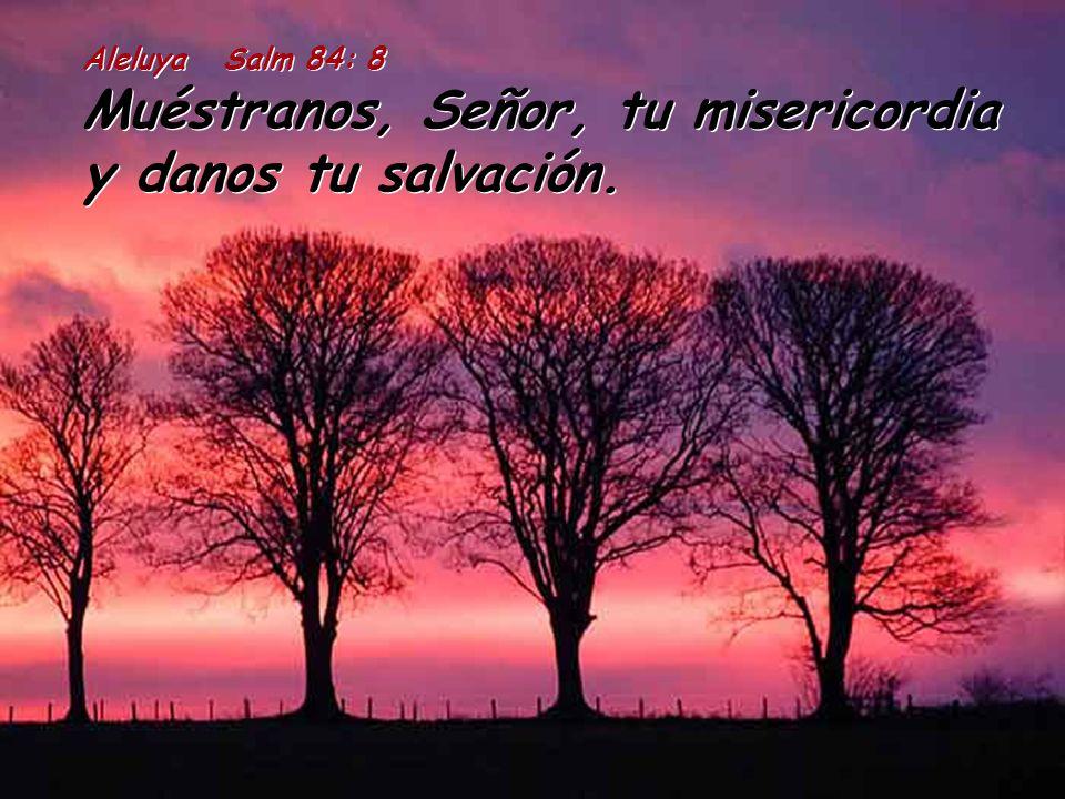 Rm 13:11-14a Conocéis, además, el tiempo que nos ha tocado vivir; ya es hora de que despertéis del sueño, pues nuestra salvación está ahora más cerca de nosotros que cuando empezamos a creer.
