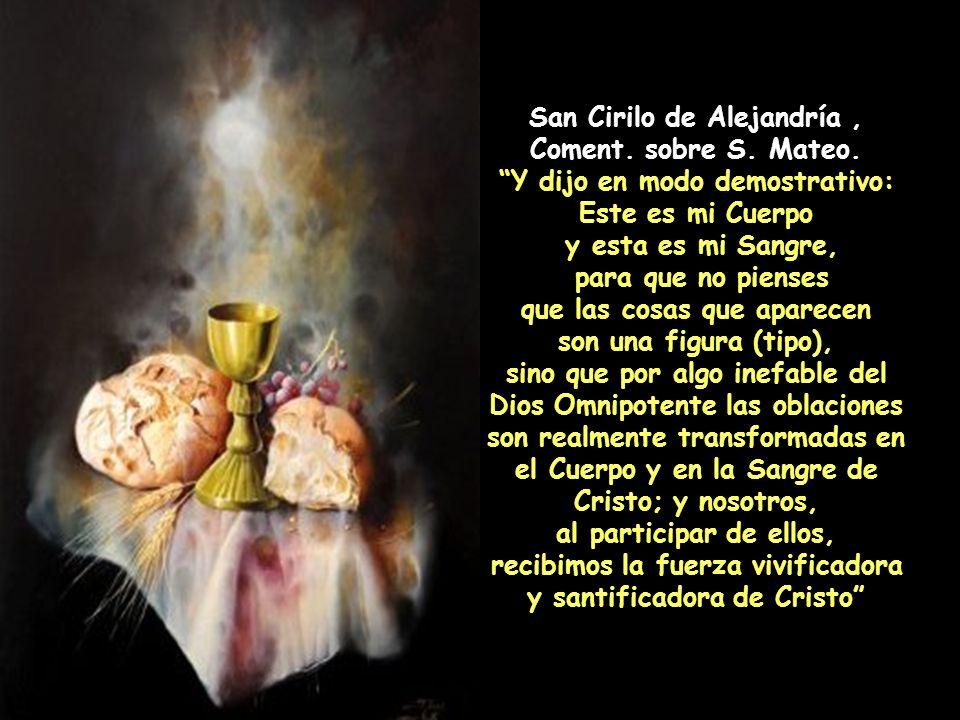 San Atanasio, Sermón a los bautizados. Una vez terminadas las grandes y admirables preces, el pan se hace Cuerpo y el cáliz Sangre de Nuestro Señor Je