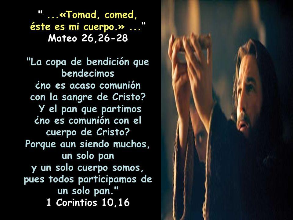 San Juan Crisostomo, Hom. sobre el Bautismo del Señor. Este es mi cuerpo, dice (el sacerdote). Esta palabra transforma las cosas ofrecidas San Juan Cr