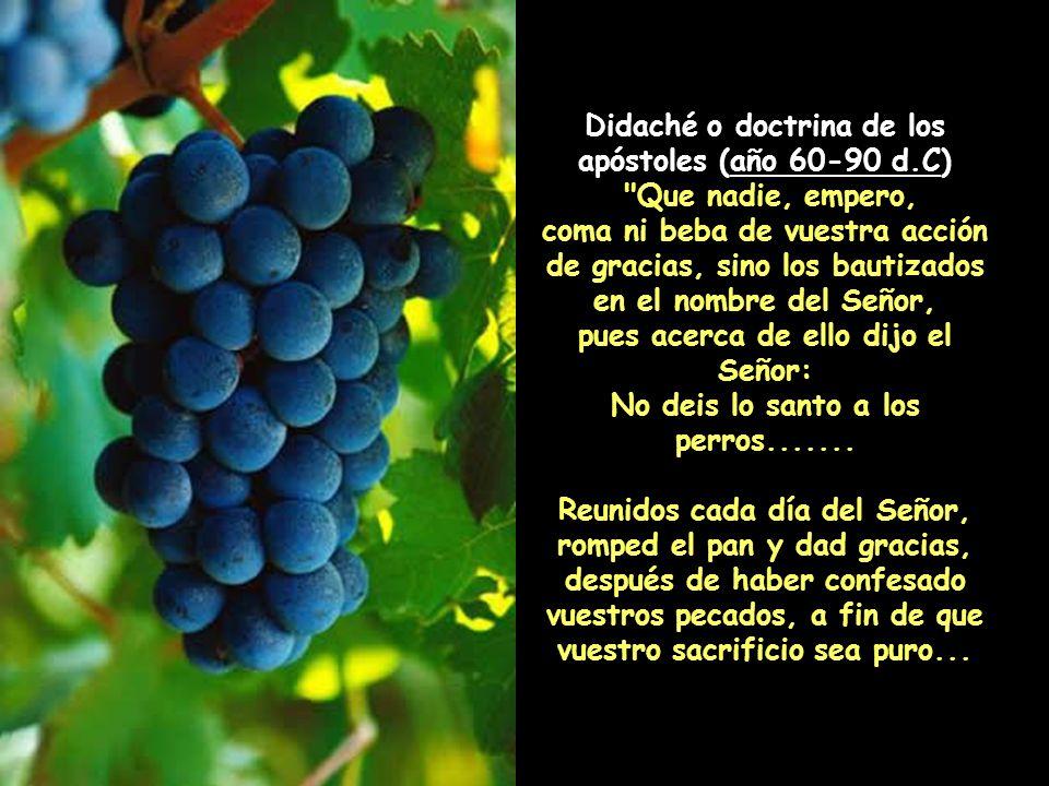 San Juan Crisóstomo, Homilías a los Primeros Corintios, 24:4:7, 392 años D.C.