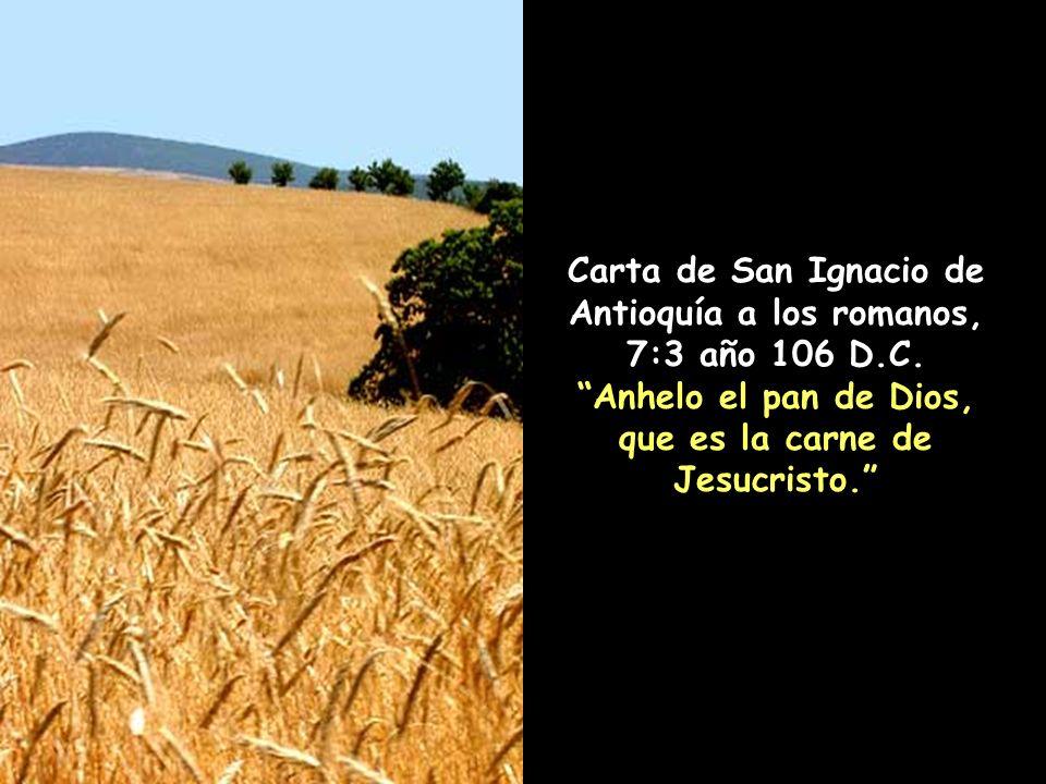 San Cirilo de Alejandría, Comentarios sobre Mateo, 26:27, 428 años D.C.