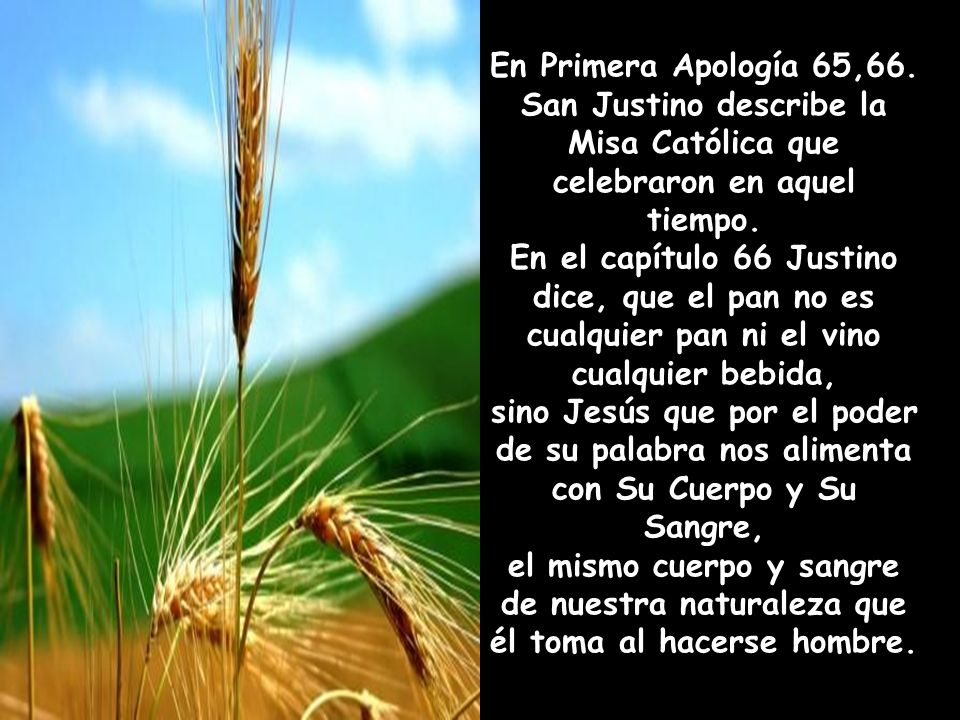 En Primera Apología 65,66.San Justino describe la Misa Católica que celebraron en aquel tiempo.