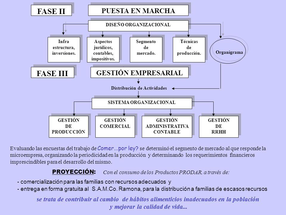 FASE II PUESTA EN MARCHA DISEÑO ORGANIZACIONAL Infra estructura, inversiones.