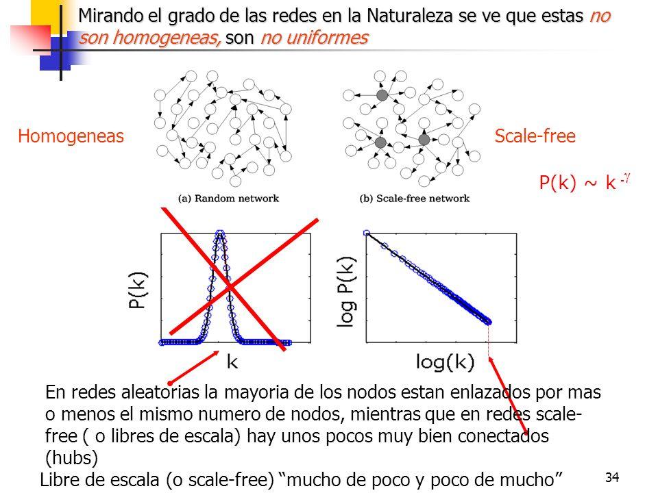 34 Scale-freeHomogeneas P(k) ~ k - Mirando el grado de las redes en la Naturaleza se ve que estas no son homogeneas, son no uniformes En redes aleator